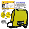 Therapy Dog Starter's Kit