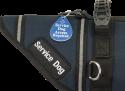Engraved Acrylic Service Dog Access Tag