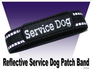 Dog Treats Pistols