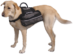Mesh Bag Vest for Service and Therapy Dogs