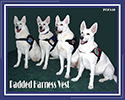 Padded Therapy Dog Vest