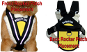 Service Dog Pulling & Balance Harness
