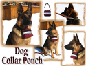 Dog Collar and Pouch