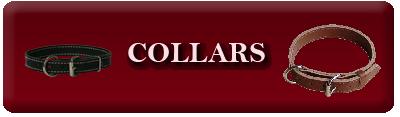 Activedogs.com Dog Collars