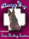 Therapy Dog Tee T-Shirt