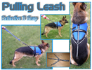 3 Snap Reflective Pulling Leash