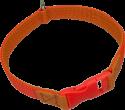 Highly Visible Orange Dog Collar