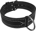 Center D RingLeather Dog Collar