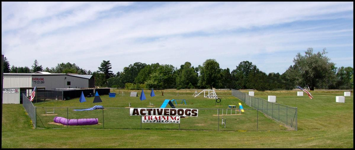 Activedogs Training Field